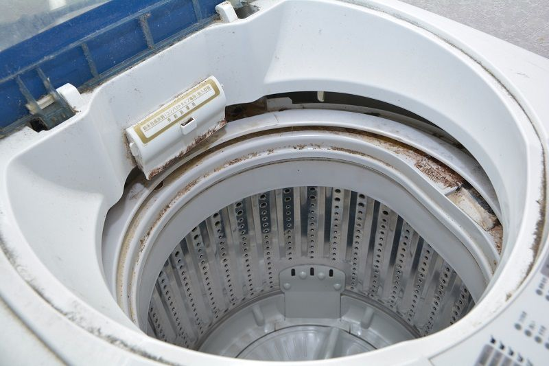 How to remove mold from washer step by step