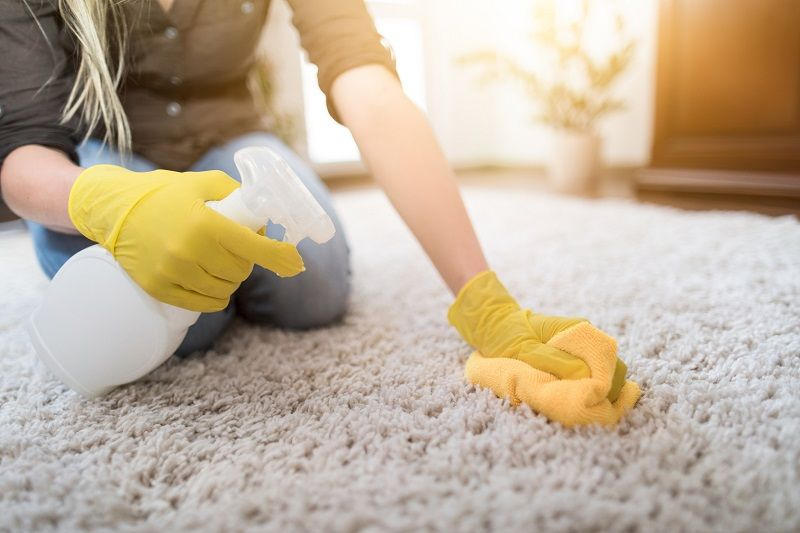 How to remove mold from carpeting?